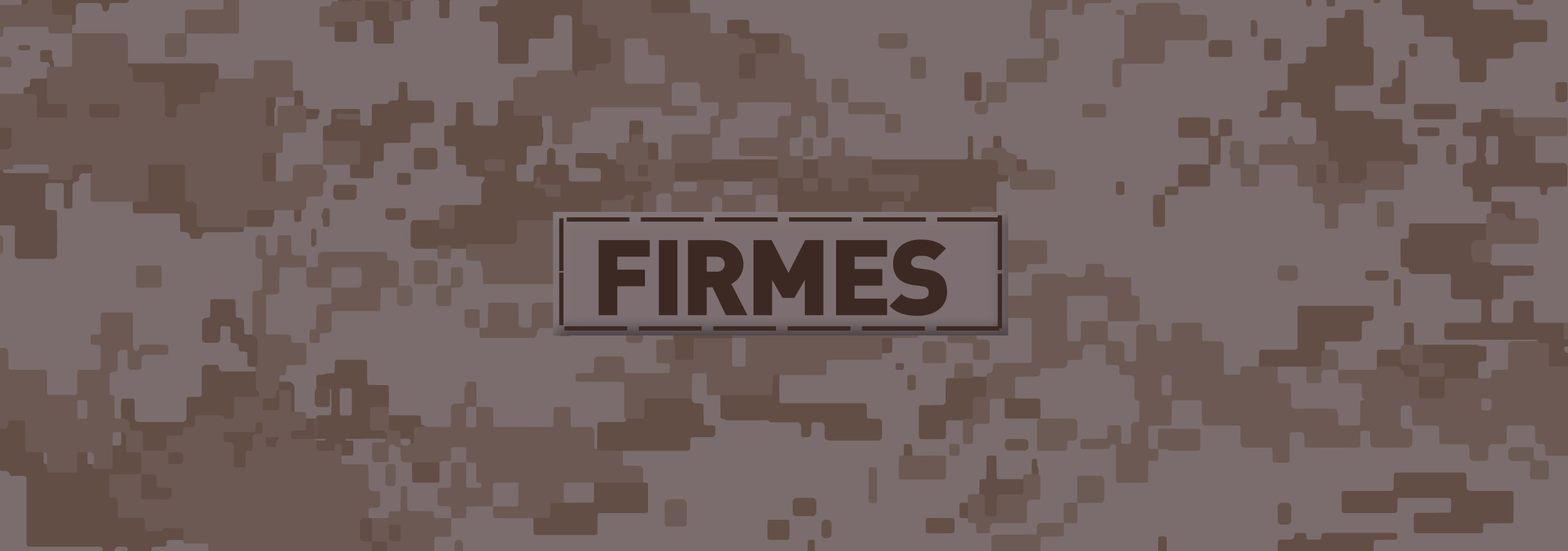 firmes web bg2.jpg